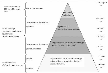 gestion de credit dans une microfinance pdf