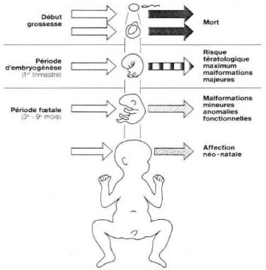 Risques pour la santé chez les adolescentes enceintes