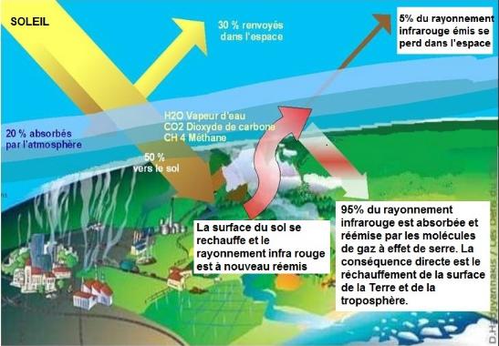 Memoire Online - Suivi par télédétection de l'évolution ...