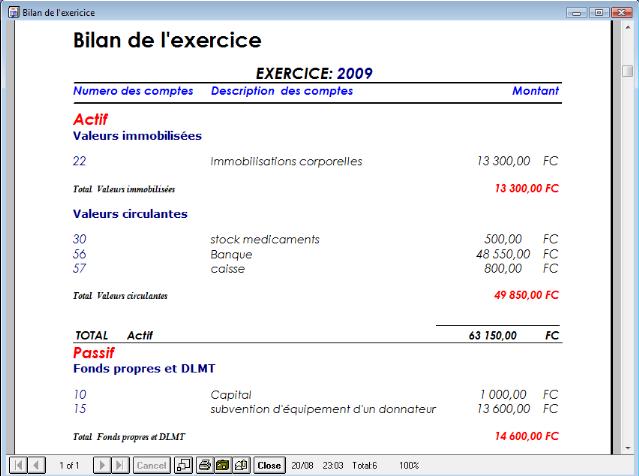 Exemple De Bilan Financier Dune Association