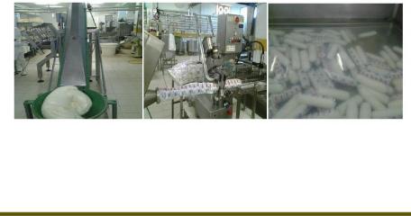 Memoire Online Int r t de fabrication de fromage