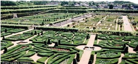 Memoire online analyse environnementale du capital for Jardin zoologique kinshasa