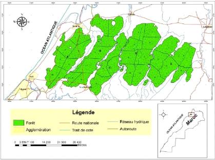 Memoire Online Elaboration D Une Base De Donnees Geographiques Et Catalogue Des Stations De La Suberaie De La Maamora Bawinabadi Maguiliwe Bagaram