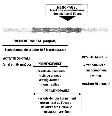 bilan hormonal femme premenopausee