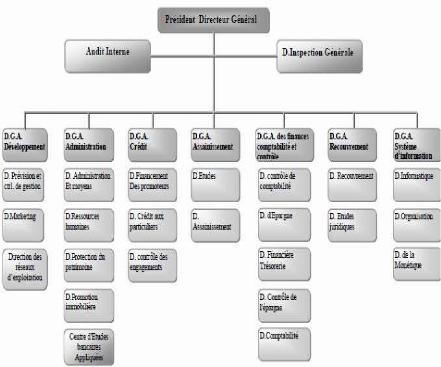 Memoire online etude analytique d 39 un financement for Organigramme online