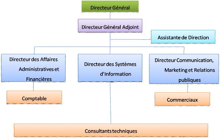 Modele organigramme pme document online for Organigramme online