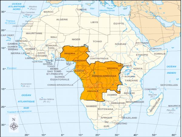 golfe de guinée carte Memoire Online   Initiatives diplomatiques et occupation de l