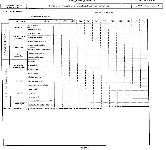 Memoire online handicap psychique et insertion professionnelle enjeux humains et - Grille d evaluation recrutement ...
