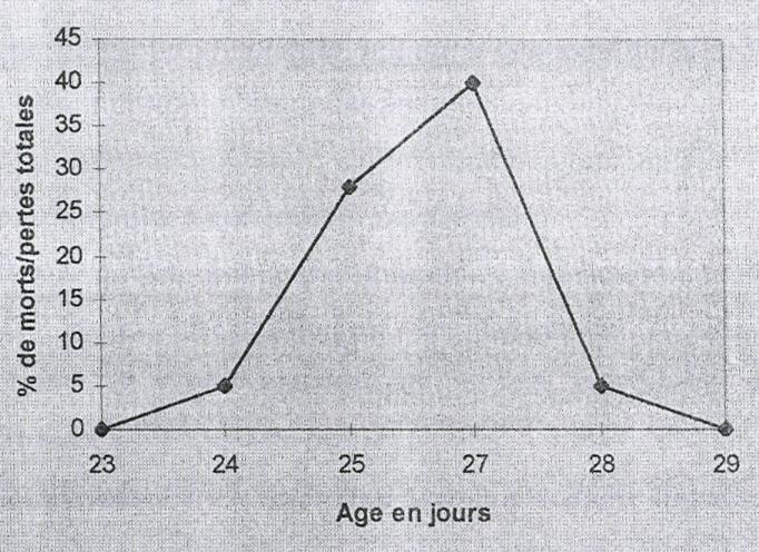 Patrimoine g n tique et maladie comment d terminer les for Les maladies des volailles