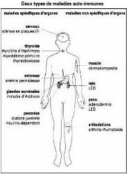 Gabapentin and hydrocodone