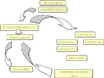 Memoire Online Rapport De Stage Assistante A La Coordination De