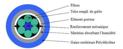 memoire online d ploiement d 39 un reseau d 39 acces a fibres optiques dans la commune de matete par. Black Bedroom Furniture Sets. Home Design Ideas