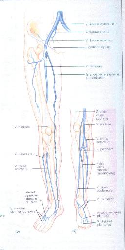 An plus profond de cecilia - 1 part 3